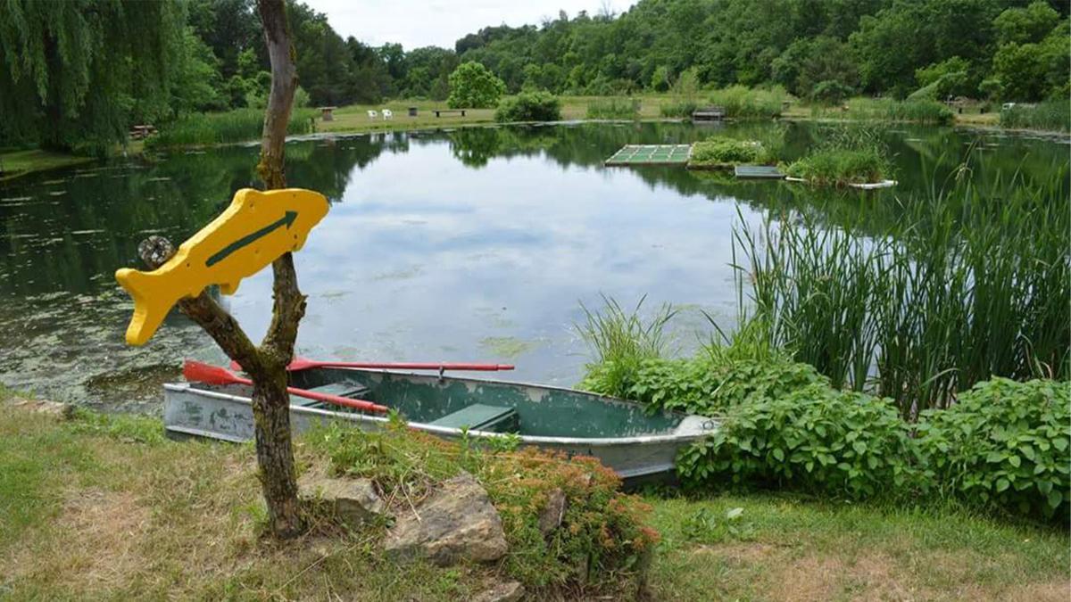 Bullfrog Fish Farm pond