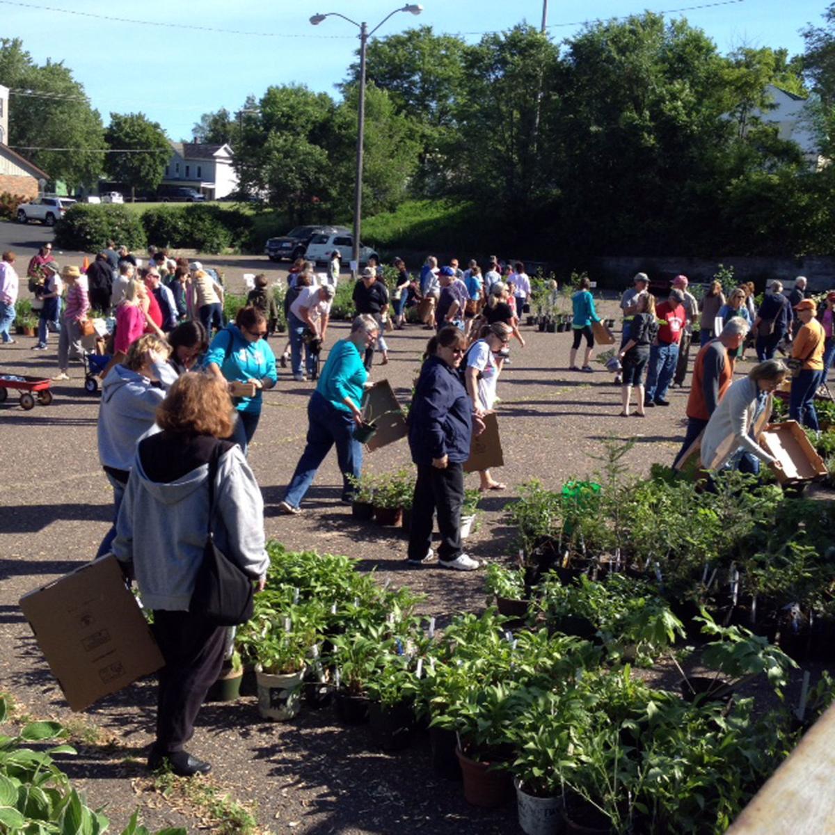Plant sale draws large crowd