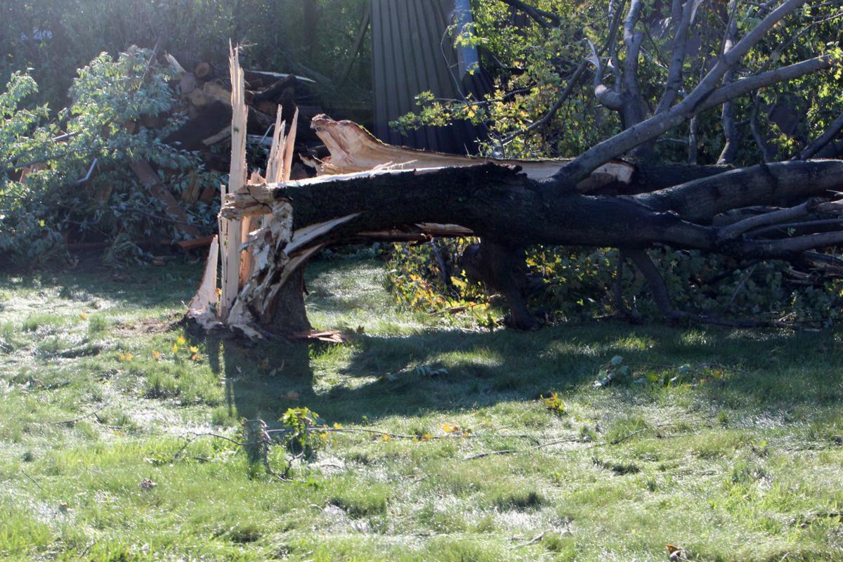 Tornado damage in near Wheaton/Elk Mound 9-25