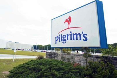 Pilgrim's Arcadia
