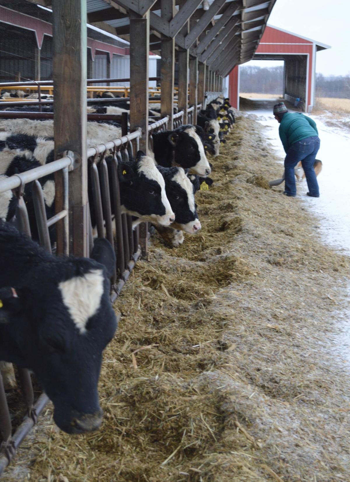 020118-dell-news-milkprices-1