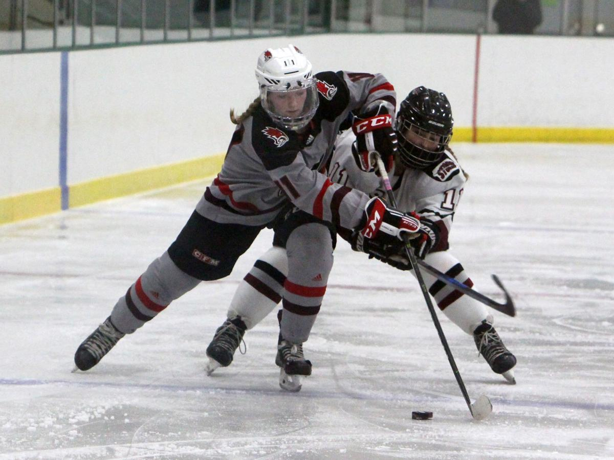 Prep girls hockey state semifinals: Chippewa Falls/Menomonie at Central Wisconsin 2-17-21