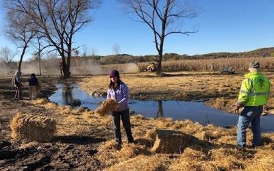 Wilson Creek mulching