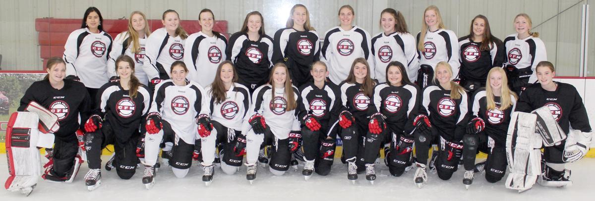 2019-20 Chi-Hi/Menomonie Girls Hockey Team