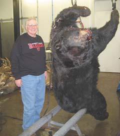 Monster black bear killed by combine