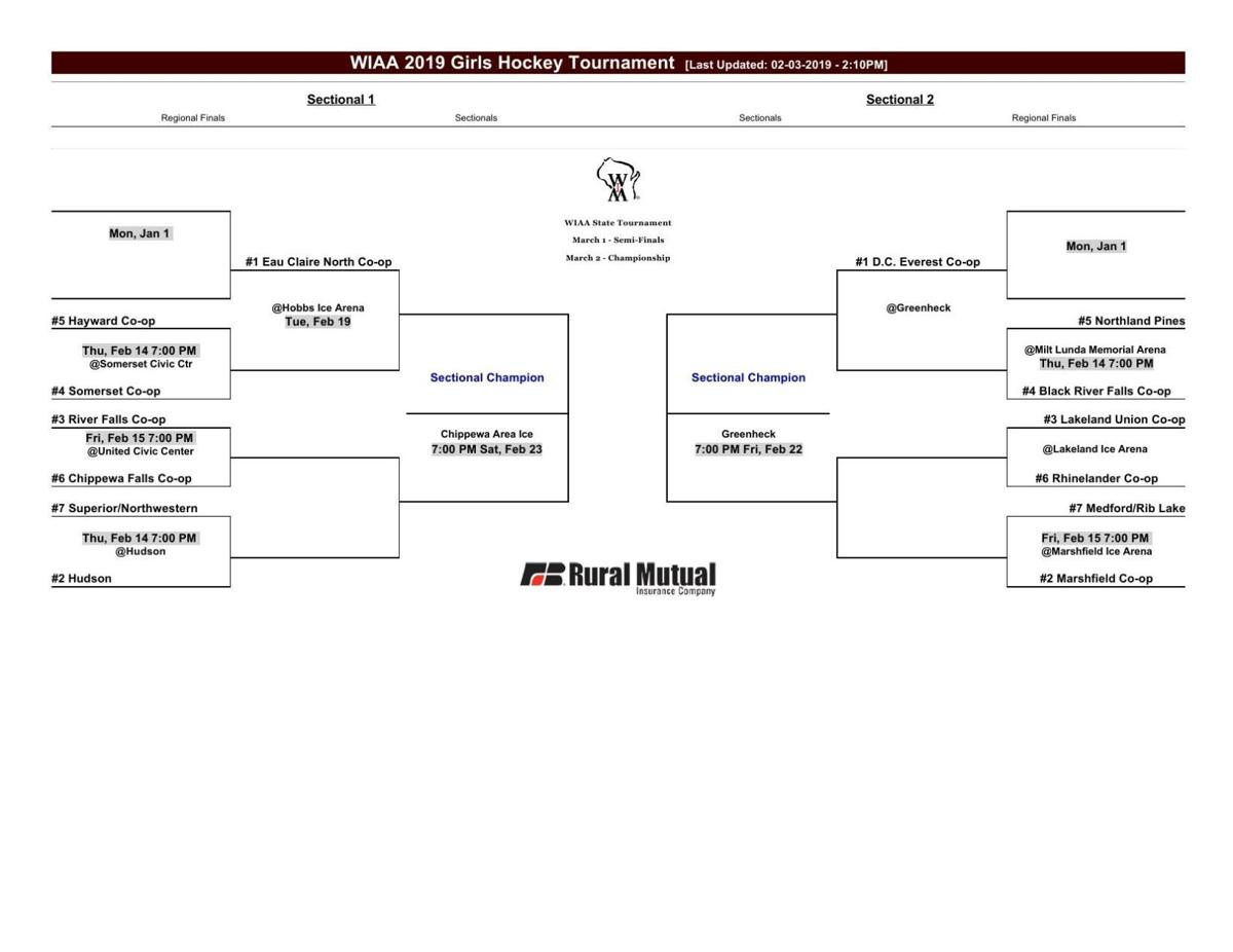 Girls Hockey Sectional Pairings