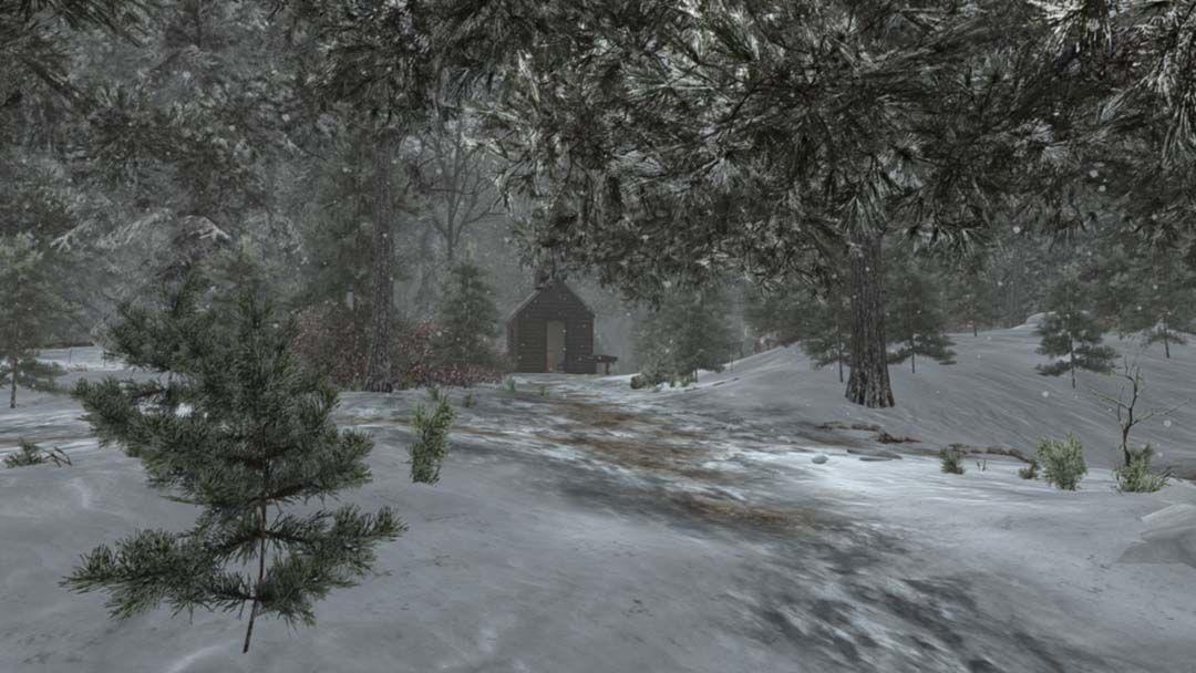 Walden video game