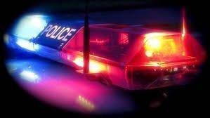 Police light image