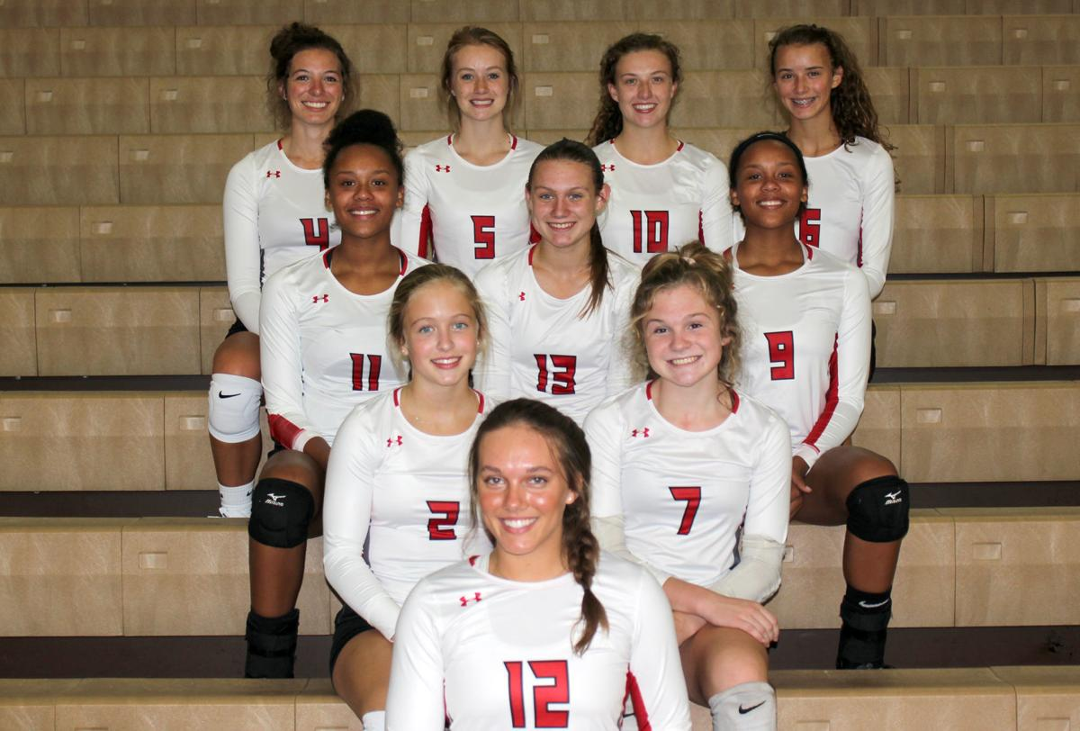 2019 Chi-Hi Volleyball Team