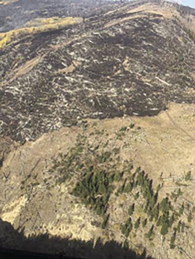 Crown Mountain fire scar