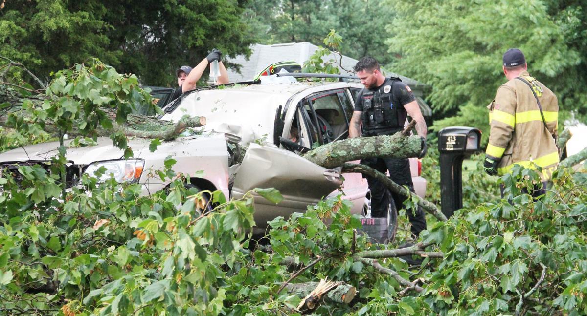 Driver pinned by tree limb