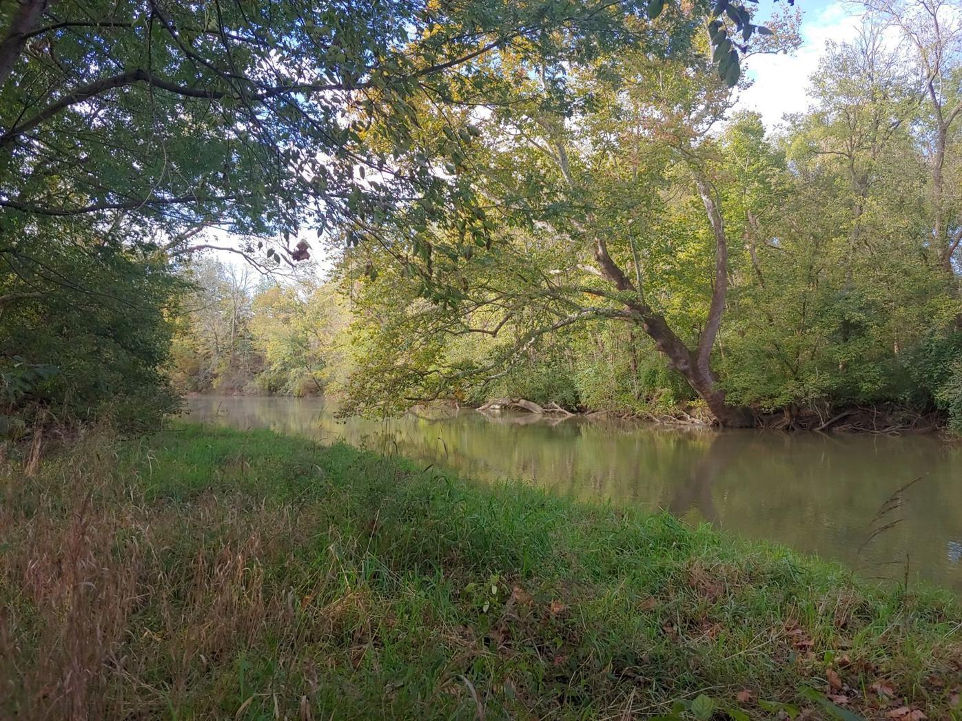Metzger preserve