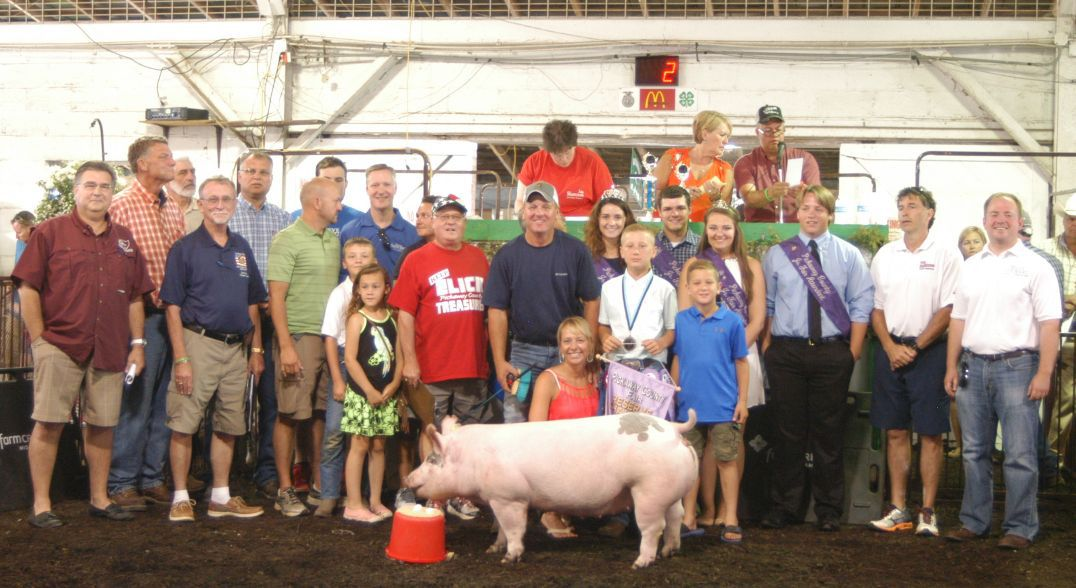 Kroger Circleville Ohio >> Pickaway County Fair - Gallery 5 (Livestock Sale
