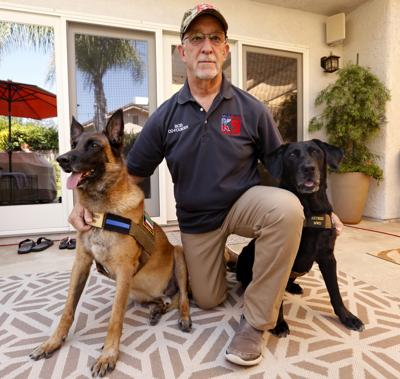 If 'Megan Leavey' left you wanting to give a military dog a fur-ever