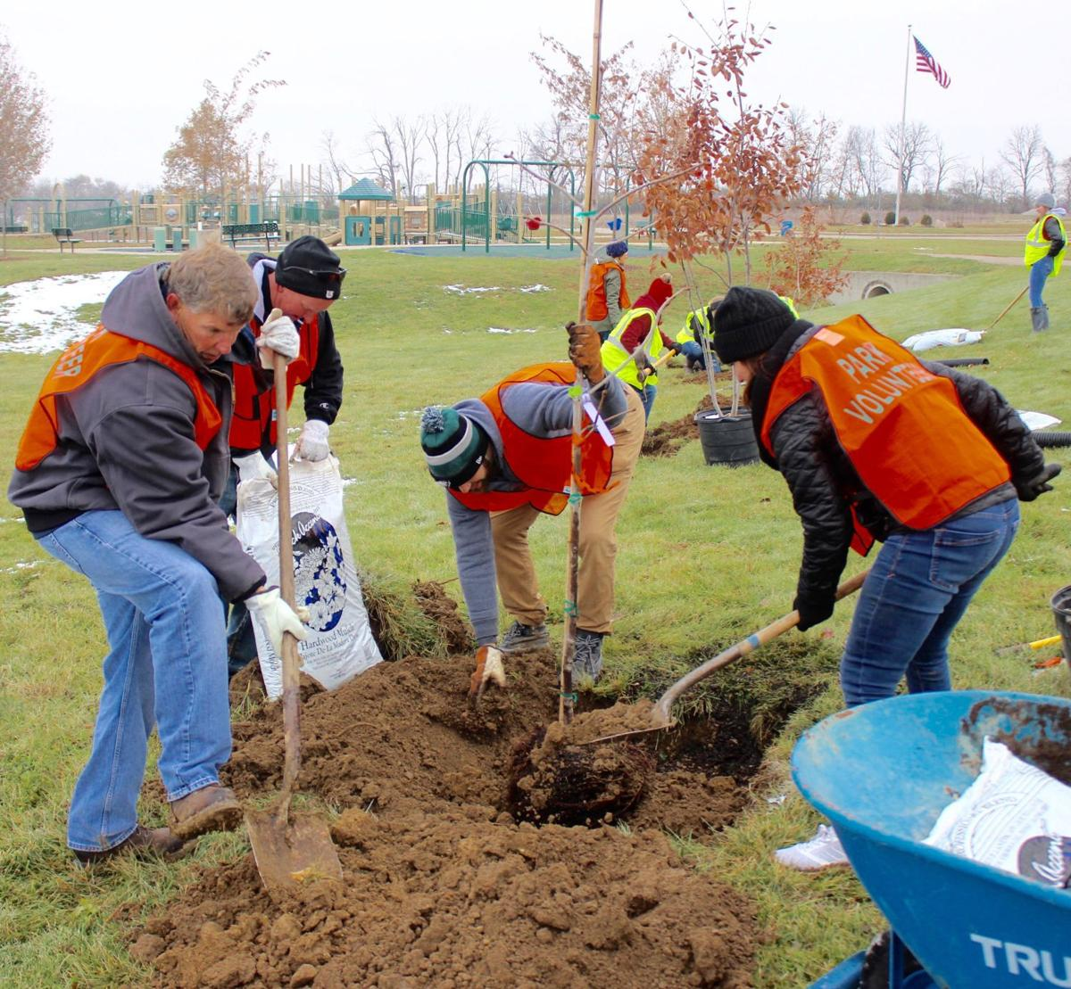 Volunteers come together to plant trees