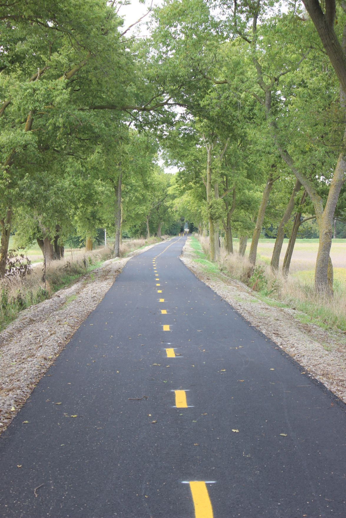 Completed Pickaway Trail Phase 1
