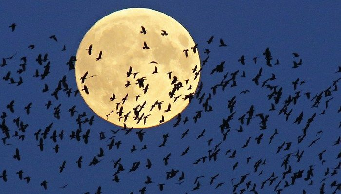2017's one and only supermoon appears Sunday night