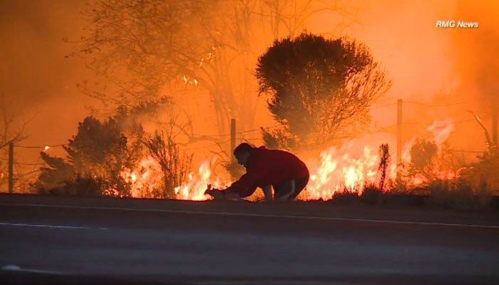 VIDEO: Man's wildfire rabbit rescue restores faith in humanity