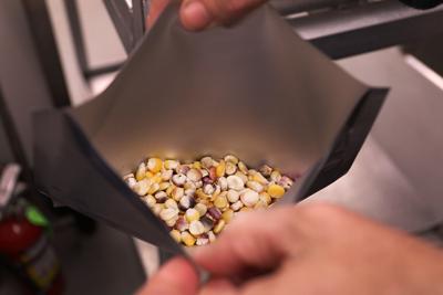 Cherokee Nation to disperse rare heirloom seeds beginning Feb. 3