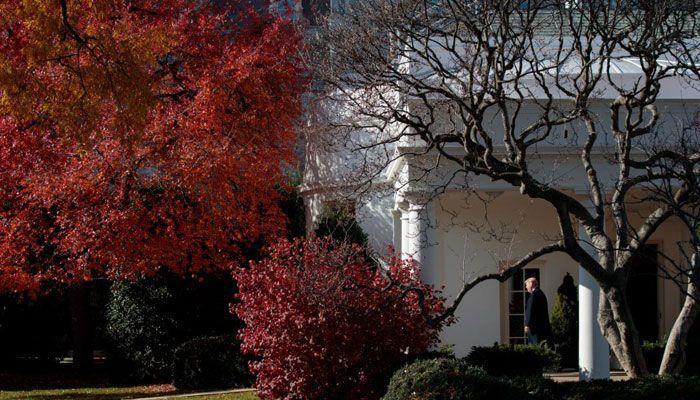 Mice, roaches unaware of prestige of White House