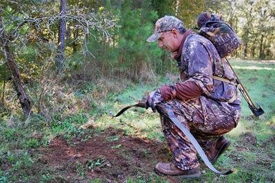 Archery seasons for deer, bear among hunting openers set for Oct. 1