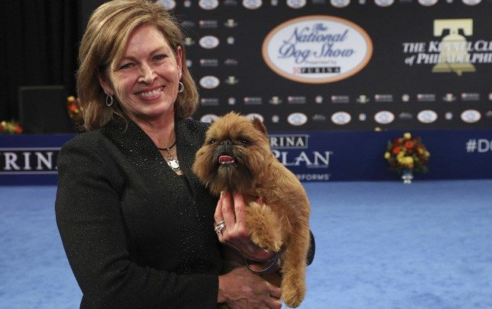 Chewbacca lookalike takes title at National Dog Show