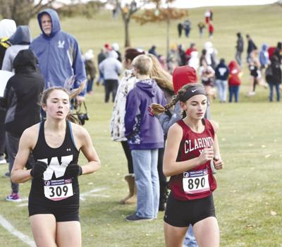 Hartley finishes 24th at state meet