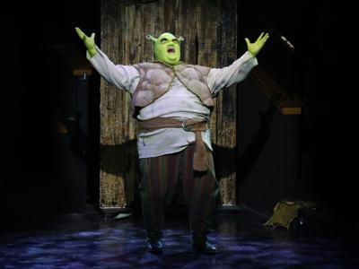 Shrek 1 - Arms up.jpg