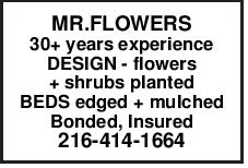 MR.FLOWERS 30+ years experience DESIGN - flowers + shrubs planted