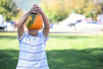 Stock kid pumpkin