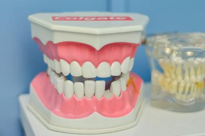 Stock dental teeth implants