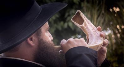 Stock shofar