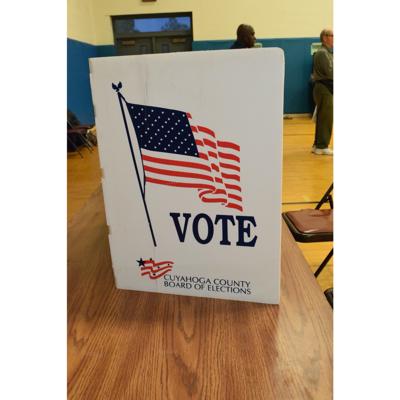 stock vote election