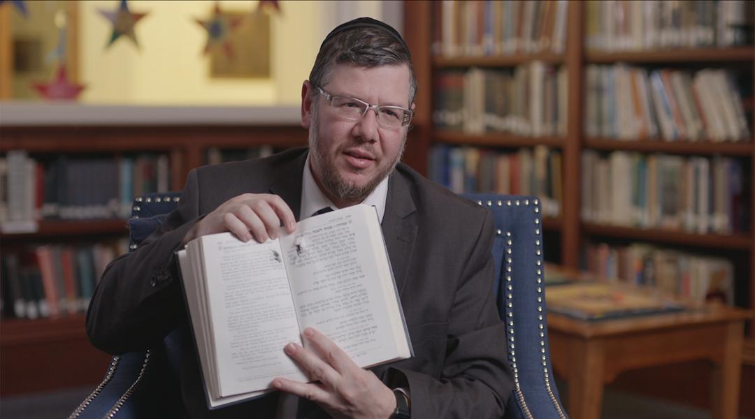Rabbi Elisar Admon