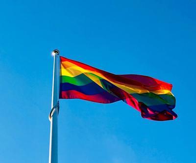 Stock Pride flag
