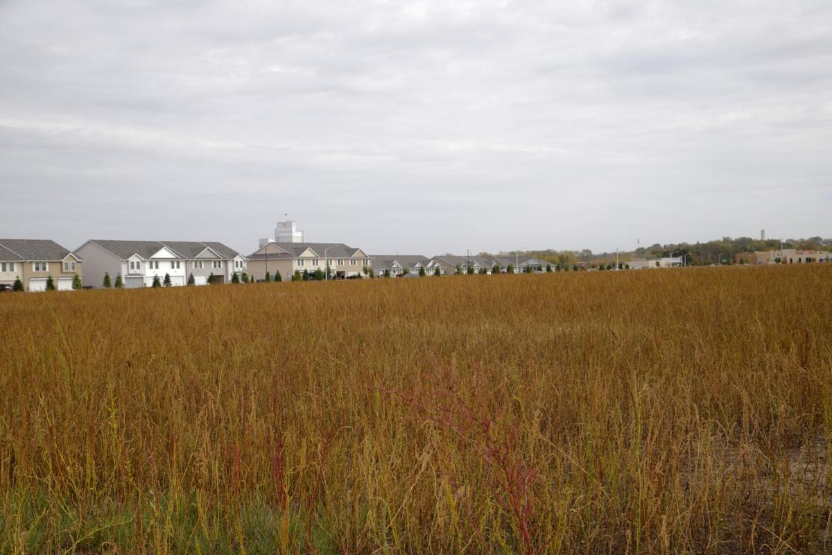 Field on Valley West Drive