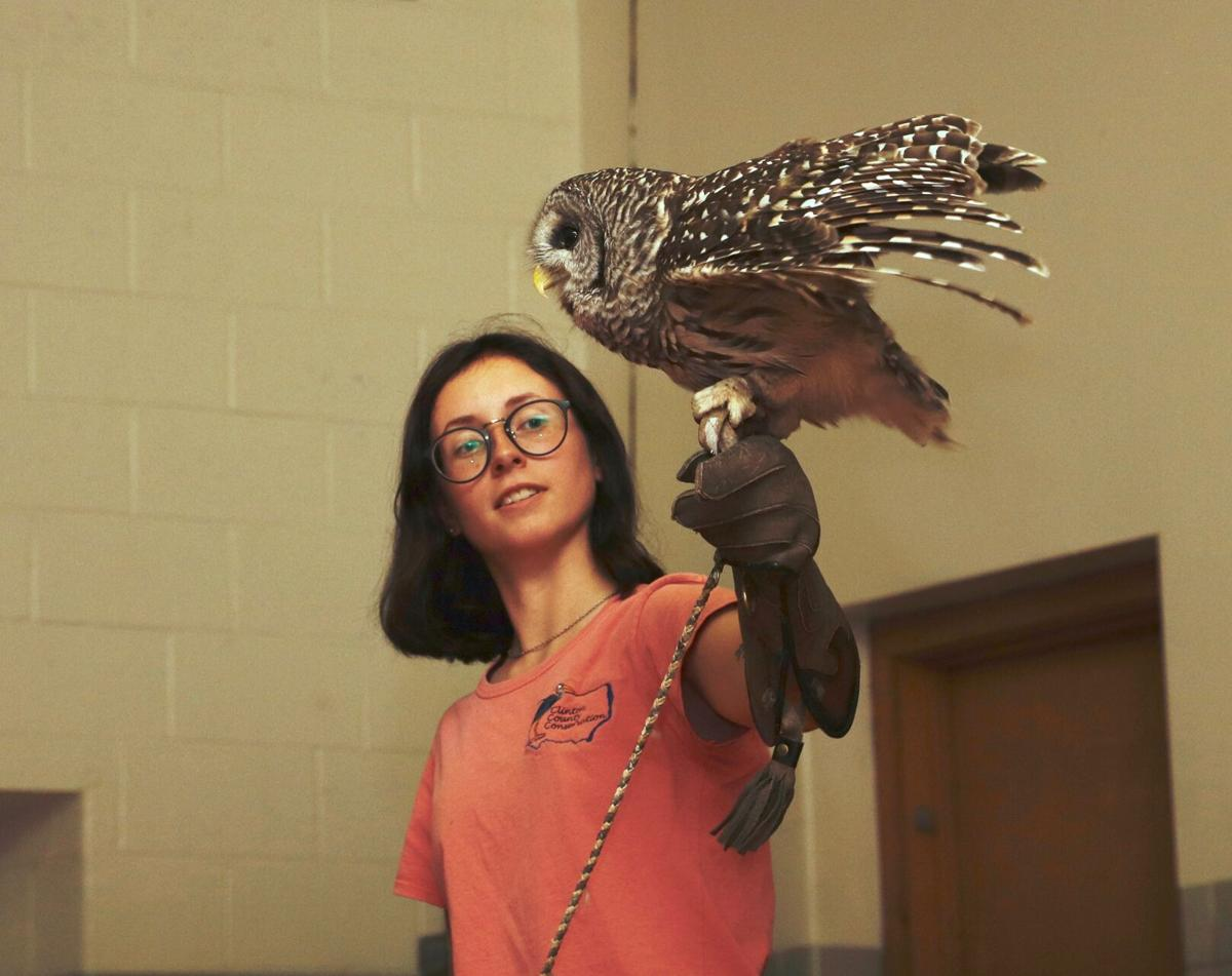 Cassidy Stoecker and barred owl
