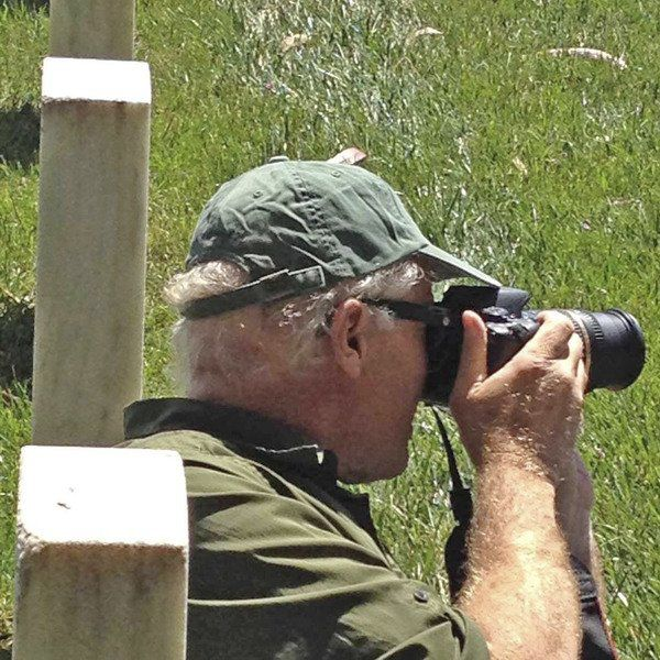 Bird-watching is Wild Winter Wednesday theme