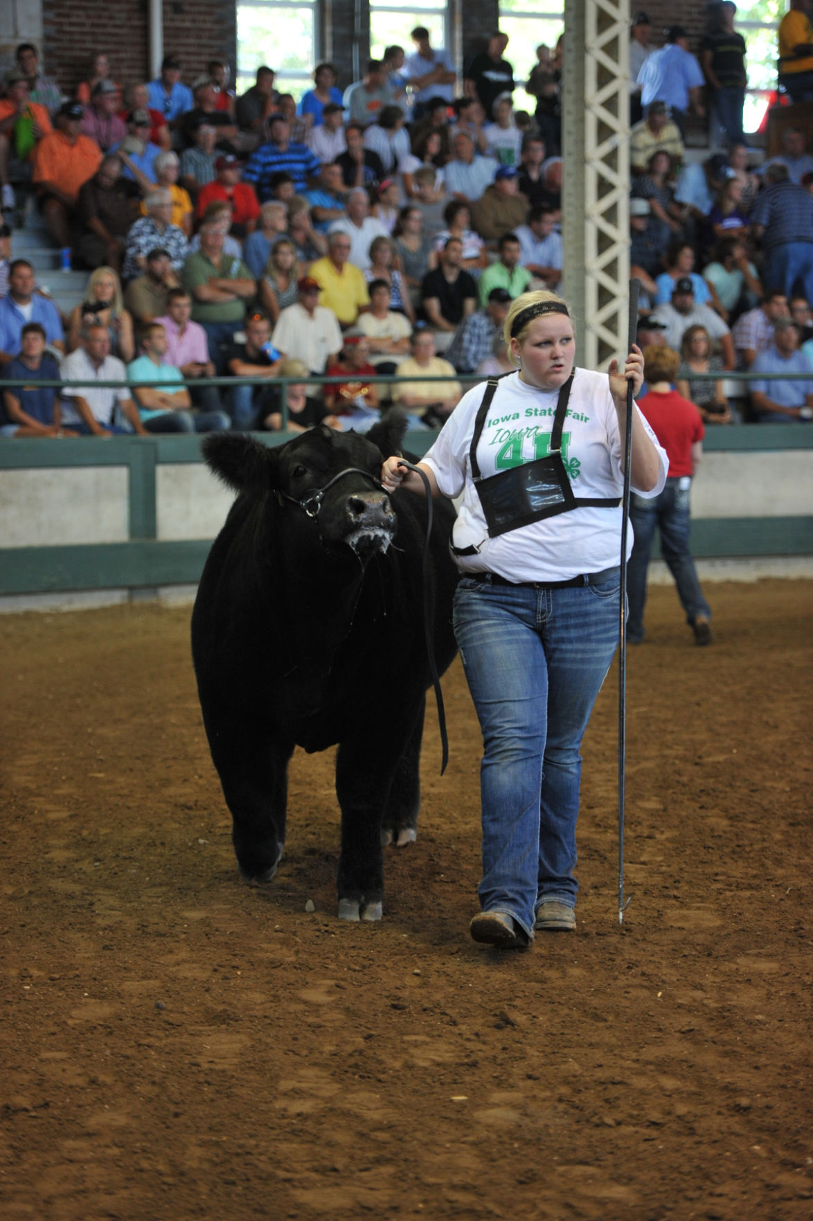Iowa State Fair Livestock Crops Results News