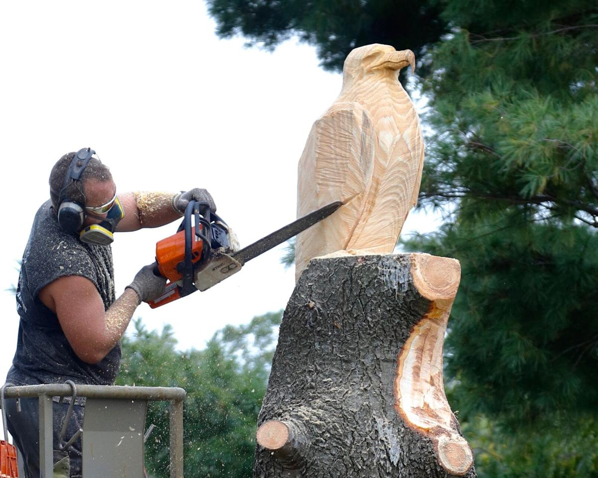 Clint Henik works on a chainsaw carving at Soaring Eagle Nature Center