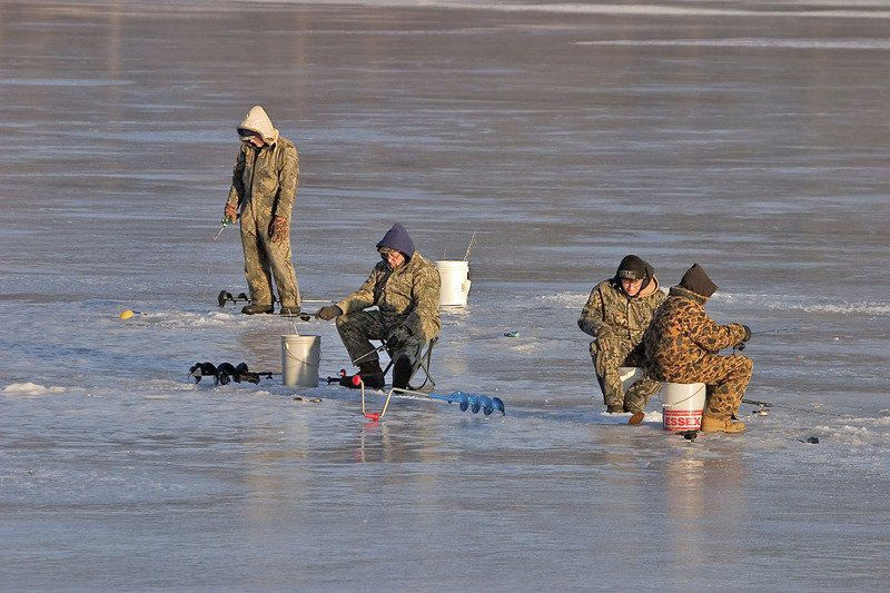 Where do fish go in the winter time?