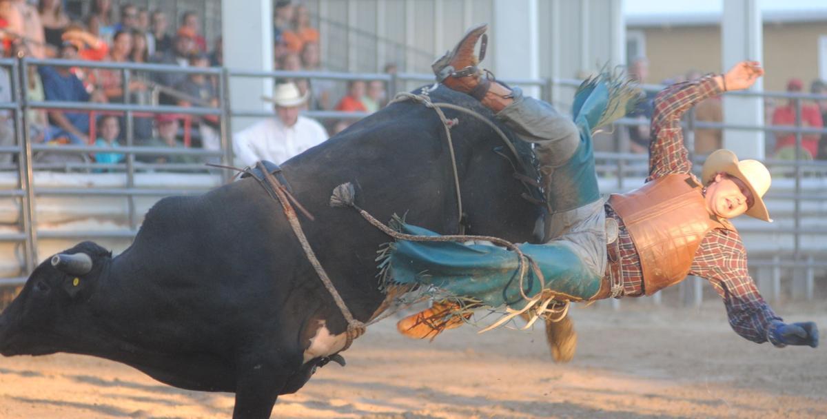 Whiteside County Fair
