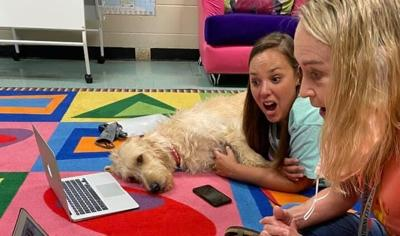 PUTTING STRESS ON PAWS: Alabama school uses therapy dog