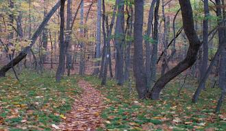 George Washington State Park