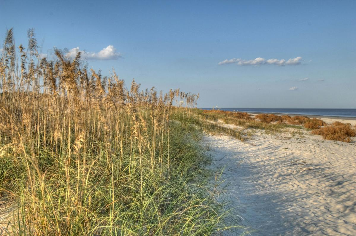Beauty of the Golden Isles