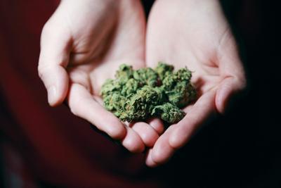 ANALYSIS: The marijuana fight isn't over – and here's why