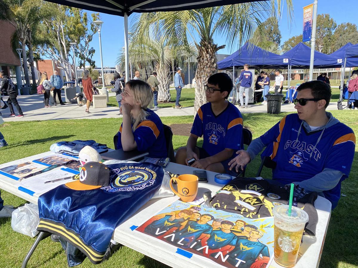 Pirate Involvement Fest Photo 2