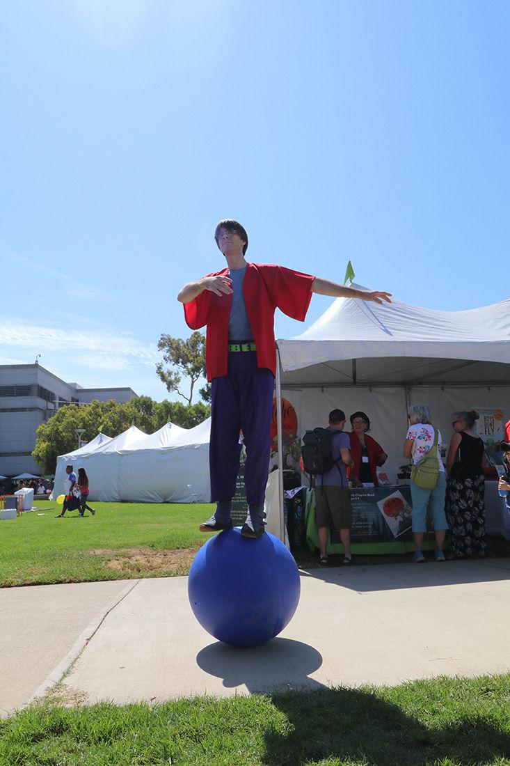 Children's Book Festival Entertainer