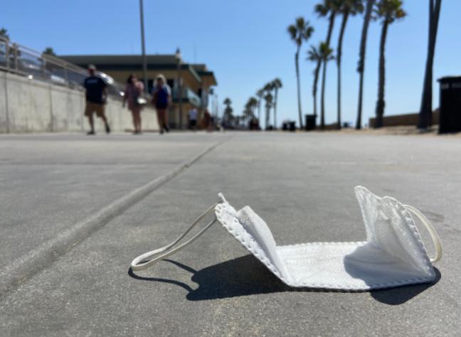 Coastal Cleanup 1