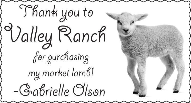 010403_angel_olson_thank_you_market_lamb_thank_you